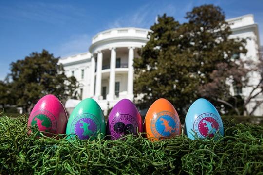 eggs_0